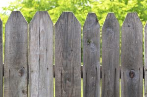 rotted fence post