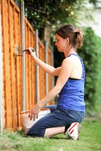 Staining-wood-fence