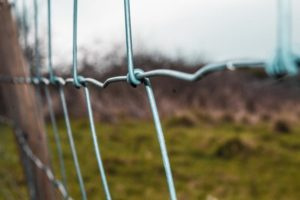 When to Use Temporary Fencing