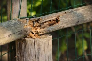 Typical Sources of Fence Damage, and How to Stop Them From Occurring