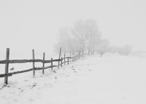 Winter Maintenance Suggestions for Your Wood or Metal Fence