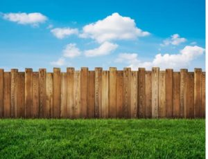 How You Should Keep your Wooden Fence Maintained During Summer
